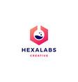 hexagon labs logo icon vector image vector image