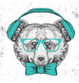 hipster animal bear hand drawing muzzle vector image
