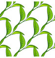 seamless pattern with tea leaves vector image vector image