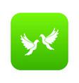 wedding doves icon digital green vector image vector image