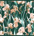 wildflower iris flower pattern full name the vector image vector image