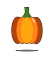 pumpkin isolated on white flat design style vector image