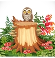 Cute owl sitting on stump surrounded by toadstools