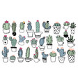 different types cacti in pots cute drawings vector image
