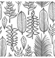 graphic heliconia pattern vector image vector image