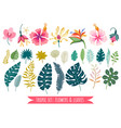 set tropical flowers cartoon rainforest vector image vector image