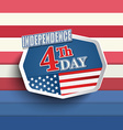 the fourth july vector image vector image