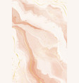 abstract dusty rose blush liquid watercolor vector image vector image