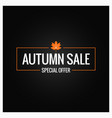 autumn sale label design background vector image vector image