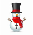 christmas snowman with top-hat and scarf vector image vector image