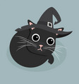 cute black cat sleep with hat vector image