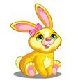 Cute yellow bunny with pink bow and ears vector image vector image