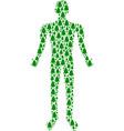 fir-tree human figure vector image