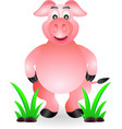 funny standing pig cartoon vector image vector image
