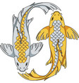 gold and silver colored koi carp fish vector image
