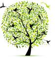 hummingbird tree sketch for your design vector image vector image