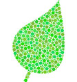 plant leaf collage of circles vector image