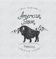 vintage trademark with american bison vector image vector image