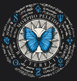 butterfly morpho peleides with old magic symbols vector image vector image
