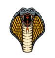 cobra snake design element for poster card banner vector image vector image