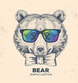 hipster animal bear hand drawing muzzle of bear vector image vector image