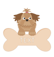 Little glamour tan Shih Tzu dog and big bone Isola vector image vector image