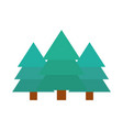 pine trees forest botanic nature flat icon style vector image vector image