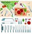 Modern Kitchen Knives for Meat and Vegetables vector image