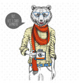 retro hipster animal bear with photo camera vector image