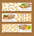 set of colourful horizontal banners with nuts vector image vector image