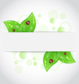 Eco green leaves with ladybugs sticking out of the vector image