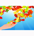 Autumn leaf in human hands vector image