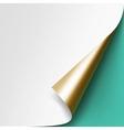 Curled Golden corner of White paper Mock up vector image vector image