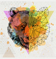 hipster animal realistic and polygonal bear vector image vector image