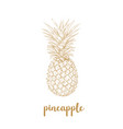 pineapple sketch vector image vector image