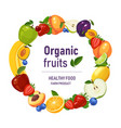 fruits background with circle in the centre vector image vector image