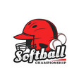 softball championship icon with red player helmet vector image
