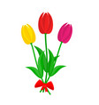 bouquet of colorful tulips vector image