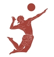 Beach volley player vector image vector image