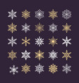 cute snowflakes collection isolated on dark vector image vector image