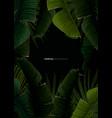 dark tropical summer design with banana palm vector image vector image