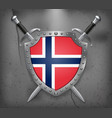 flag of norway the shield with national flag two vector image vector image