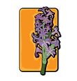 hyacinth clip art yellow vector image