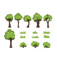 trees bushes and grass isolated image forest vector image