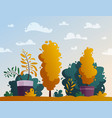 beautiful plants cartoon vector image