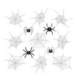 collection of cartoon spiders and webs vector image