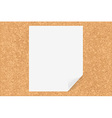 Cork Board With Paper vector image vector image