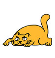 cute cartoon orange cat preys vector image vector image