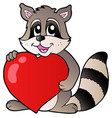 cute racoon holding heart vector image