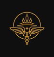 health symbol and crown logo design vector image